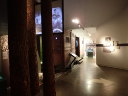 Muzeum Emigracji w Gdyni foto: Kasia Koj