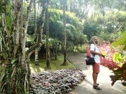 Ogród botaniczny Jardin Balata foto: Kasia Koj