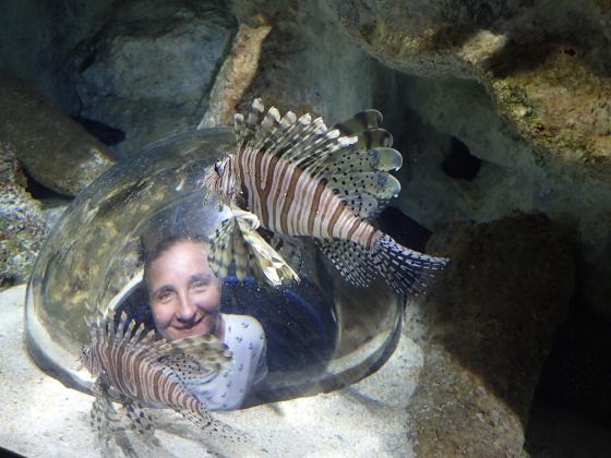 Aquarium de la Guadeloupe (Pointe a Pitre, Gwadelupa 2018)