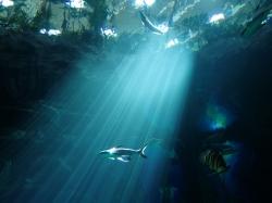 "Akwarium ""Poema del Mar"" w Las Palmas na Gran Canaria foto: Piotr Kowalski"