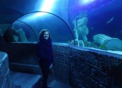 Oceanarium w Porto Sea Life   Charter.pl foto: Kasia Koj