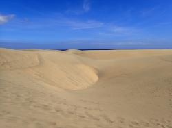Wydmy, wydmy, wydmy...... wydmy w Maspalomas zajmują ogromny obszar ponad 400 ha foto: Kasia Koj