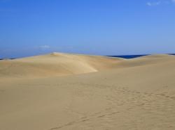 Wydmy w Maspalomas rozciągają się wzdłuż oceanu na długości 6 km foto: Kasia Koj
