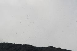 Etna wypluwa z siebie nadmiar pary i kamieni | Charter.pl foto: Kasia Koj