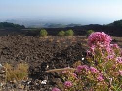 Wulkan Etna zdobyty, wracamy | Charter.pl foto: Kasia Koj