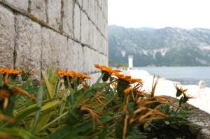 Wyspa Gospa od Škrpjela (Wyspa Matki Boskiej na Skale) to sztuczna wyspa – jedyna taka na Morzu foto: Kasia Koj