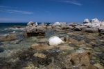 Korsyka - Calvi, wybrzeże foto: Piotr Szczepański