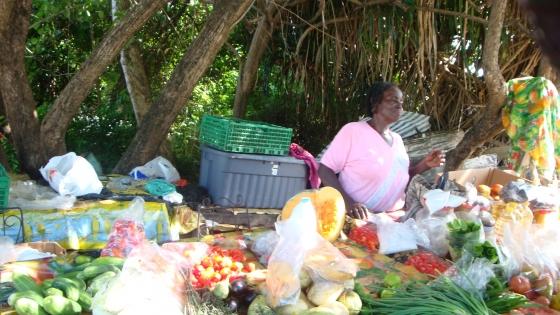 Piraci z Karaibów (Wyspy Zawietrzne, listopad 2009)