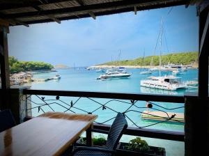 Palmižana jedna z najpiękniejszych marin w Chorwacji | Charter.pl foto: Justyna & Bartek