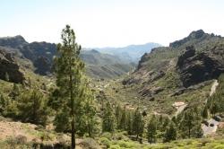 """Jeden z wielu """"miradorów"""". Gran Canaria jest na prawdę piękna! foto: Piotr Kowalski"""