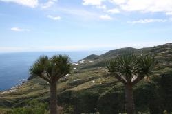 Wyspa La Palma - znajdziemy tutaj tysiące cudownych miejsc foto: Piotr Kowalski