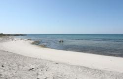 Zieleń przyrody, fiolet wrzosu i biel piasku, to są kolory wyspy Anholt - Charter.pl foto: Piotr Kowalski