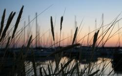 Kolory wyspy Anholt - Charter.pl foto: Piotr Kowalski