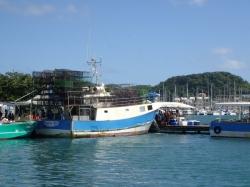 Przy marinie (w starej części) można kupić świeżą rybę, prosto z kurta | Charter.pl foto: Kasia Koj