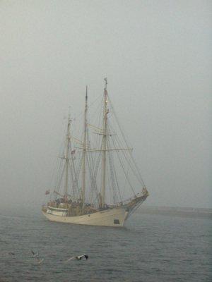 Zawias we mgle foto: Kasia