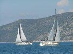 jachty pływają foto: Iwonka