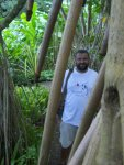 las palmowy foto: Kasia