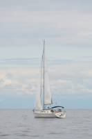 w morzu  foto: Kasia