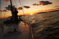 w morzu  foto: Benek Breszka