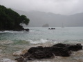 deszczowe Tobago  foto: Kasia