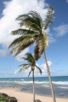 Karaibski rejs  foto: Peter