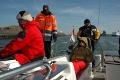 i znowu w morzu  foto: Ewa Waliszewska