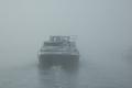 gęsta mgła  foto: Ewa Waliszewska