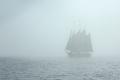 bardzo gęsta mgła  foto: Ewa Waliszewska