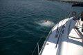 kąpiel w morzu  foto: Kamila Kłos
