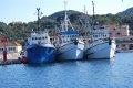 kutry rybackie  foto: załoga jachtu