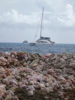 jeszcze kilka ujęć z Union Island foto: Krzysztof Chmura