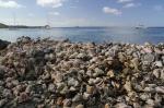 Mustigue, wyspa tysiąca muszli foto: Krzysztof Chmura