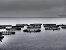Rejs Morze Jońskie foto: Katarzyna Koj