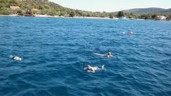Wakacje w Chorwacji pod żaglami foto: Tomasz Cieślar