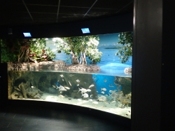 Za to udało się wejść do oceanariu foto: Kasia