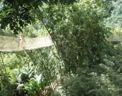 "Ogród botaniczny ""Jardin de Balata"" ,foto: Ela"
