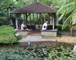"Ogród botaniczny ""Jardin de Balata""  foto: Ela"