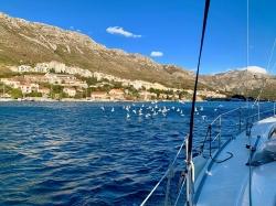 Po dobrze ponad dobie dopływamy do Dubrownika - Sylwester w Chorwacji,foto: Justyna & Bartosz Kubiczek