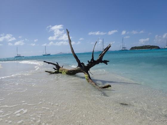 Rejs morski (Karaiby, Wyspy Zawietrzne, grudzień 2018)