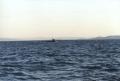 Rejs morski (Chorwacja, październik 2000)