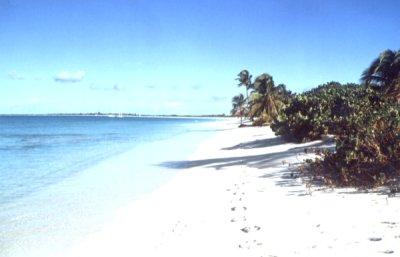 Następna plaża foto: Peter