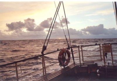 W morzu! foto: Peter